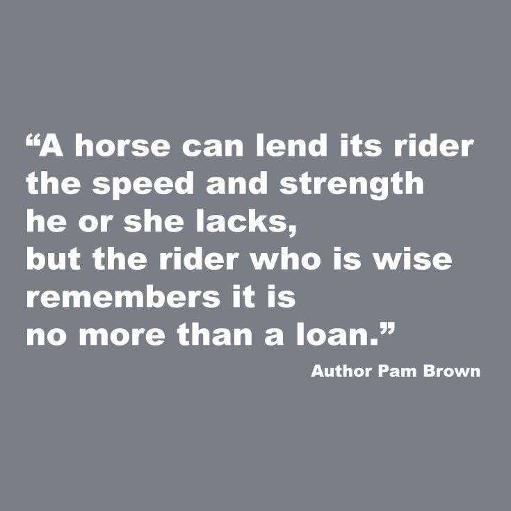 Love this quote! Horses truly are incredible.