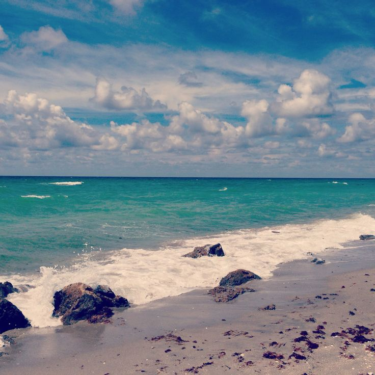 Good Places To Travel To In Florida: 986 Best Florida Fanatic Images On Pinterest
