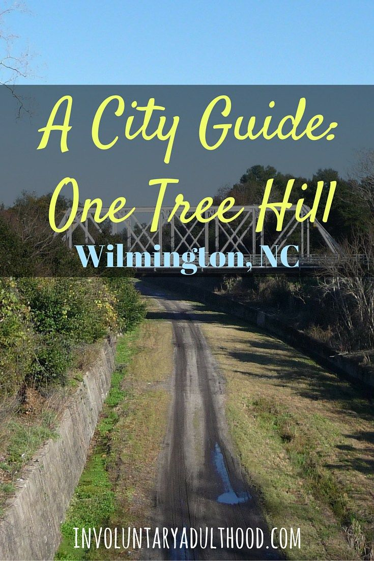Contributor Annalise explores One Tree Hill in Wilmington, NC.