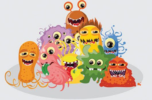 Les bactéries, vous connaissez ?