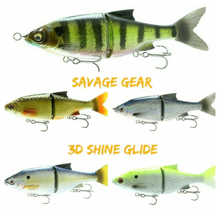98 best images about savage gear on pinterest for d big for Walleye fishing gear