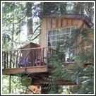 The Nest at Treehouse Point.  Stay in one of 6 tree houses or in the main lodge.  About 30 minutes from Seattle Washington.