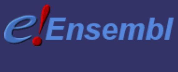 The Ensembl project produces genome databases for vertebrates and other eukaryotic species, and makes this information freely available online
