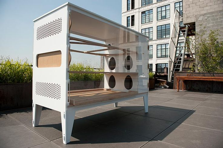 Luxury living for the urban hen indeed!  At $3500 it's priced at just about what a comparable condo would be.  I wonder if this comes with a little homing pigeon concierge?
