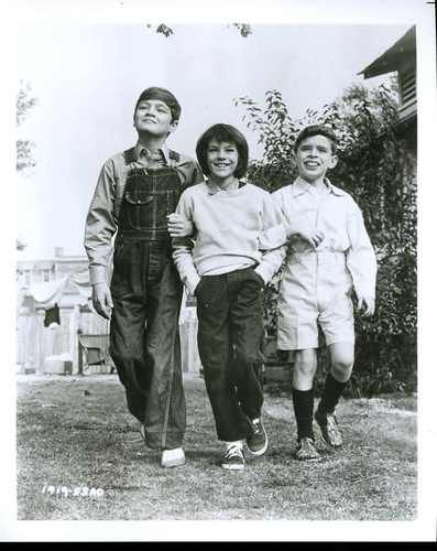 mrs radley and the finch kids in to kill a mockingbird a novel by harper lee Wondering about boo radley gets the kids into a lot of  analysis-scout-finch-kill-mockingbird-harper-lee  novel to kill a mockingbird, by harper lee,.