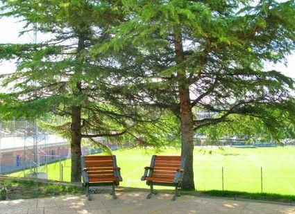 Parque Navarra | enalcobendas.es