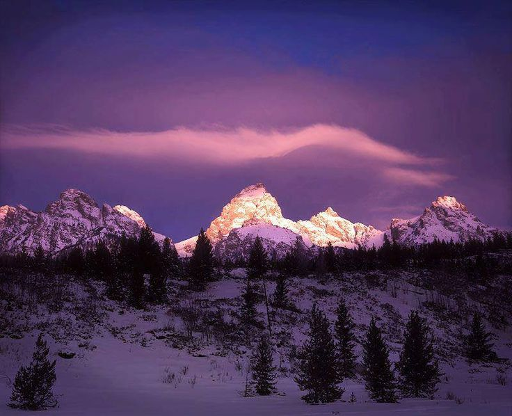 29 best purple mountains majesty images on pinterest for Mountain majesty