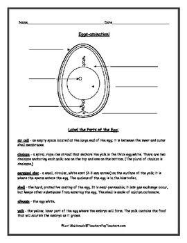 magic school bus water cycle worksheet