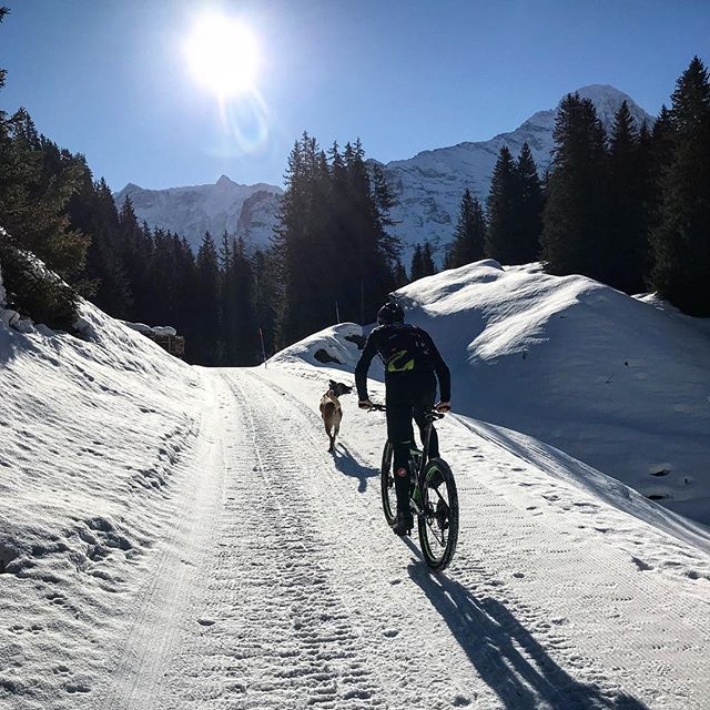 Perfect day to ride the MTB     #ride #cannondale @tempo_sport.ch #uphigh #winterwonderland #snowsnowsnow #scalpelsi #29er