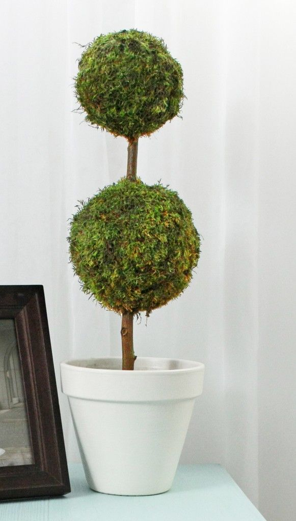 Decorative Moss Balls Stunning 30 Best Diy Moss Balls & Topiaries Images On Pinterest  Bricolage Decorating Design