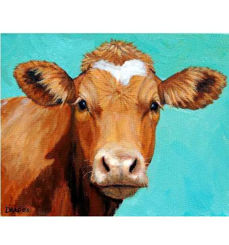 Guernsey Cow Art Farm Animal Print Face on Light by DottieDracos