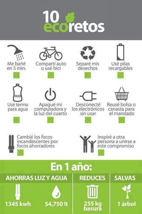 Seguramente con estos 10 eco-retos la salud del planeta y la tuya mejorarán, ¿quieres ser parte del cambio?