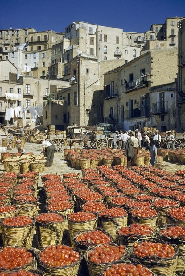 Baskets filled with tomatoes stand in rows in piazza - Sicily, Italy by nannie