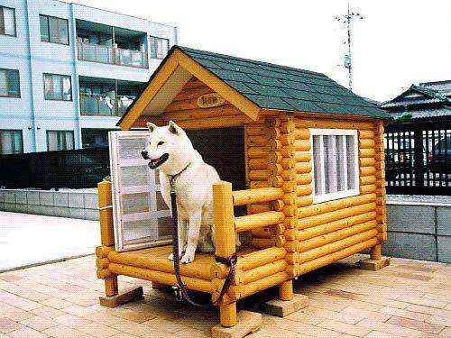Resultado de imagem para Casinha de Cachorros