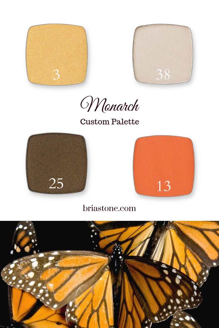 Custom Eyeshadow Palette. Monarch butterfly inspired