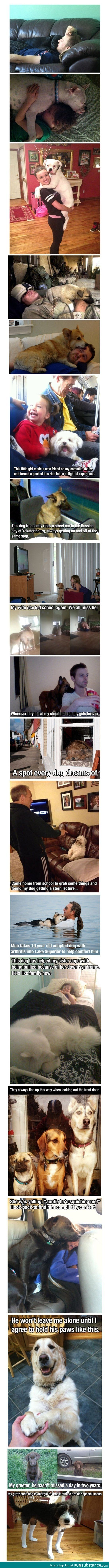 Dogs are great