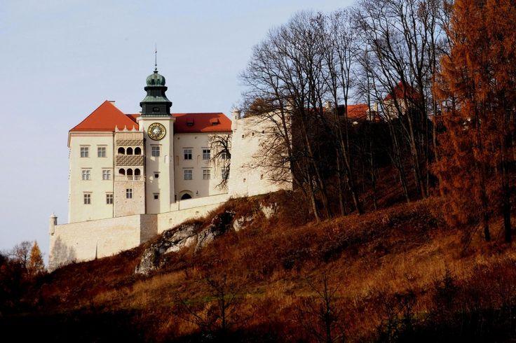 """Zamek w Pieskowej Skale po raz pierwszy wzmiankowany jest jako Peskenstein w dokumencie wydanym w 1315 r. przez Władysława Łokietka. W I poł. XIV w. Kazimierz III Wielki wybudował tu zamek, element łańcucha obronnych Orlich Gniazd, składający się z dwóch części: górnej i dolnej. Górna, niezachowana, wzniesiona była na niedostępnej skale zwanej """"Dorotką"""". W latach 1377-1608 zamek był siedzibą rodu Szafrańców. Obecnie jest to muzeum - Oddział Państwowych Zbiorów Sztuki na Wawelu."""