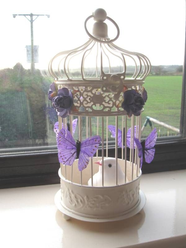 http://www.cherlaan.com/ekmps/shops/rhanley/images/ap-bird-cage-with-butterflies-birds-667-p.jpg