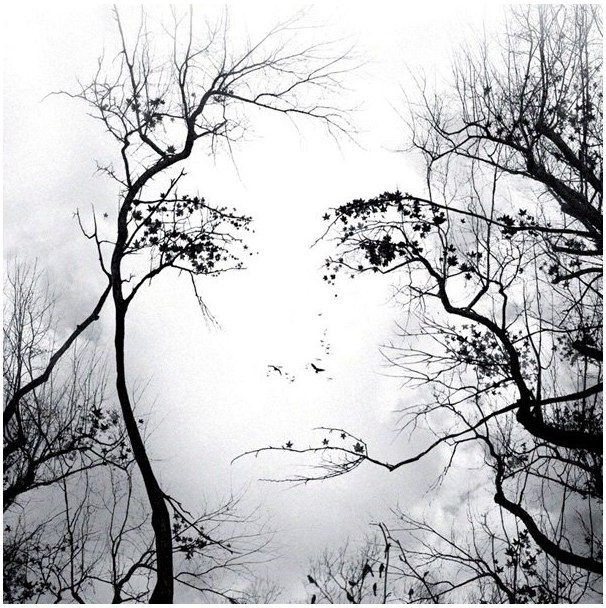 Face in trees