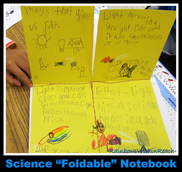 """Science """"Foldable"""" Notebook in First Grade (via RainbowsWithinReach RoundUP of Foldables)"""