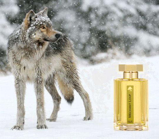 MECHANT LOUP de L'Artisan Parfumeur. Attenzione donne!!! Il lupo è uscito dal bosco... non fatevi catturare