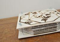 DIY Blumenpresse Man braucht:  * 2 Holzplatten 21 x 21 cm (ein praktisches Format, weil man das Material eventuell im A4-Format bekommt und gleich im Baumarkt zuschneiden lassen kann) * 4 Imbuss-Schrauben M5 x 60 mm (mit so einer Platte unten dran) * 4 Flügelmuttern M5 * Kartonstücke 21 x 21 cm aus alten Verpackungen zurechtgeschnitten (zum Beispiel von Amazon-Buch-Sendungen) * Löschpapier 21 x 21 cm (auch A4-Papier zum Quadrat geschnitten)