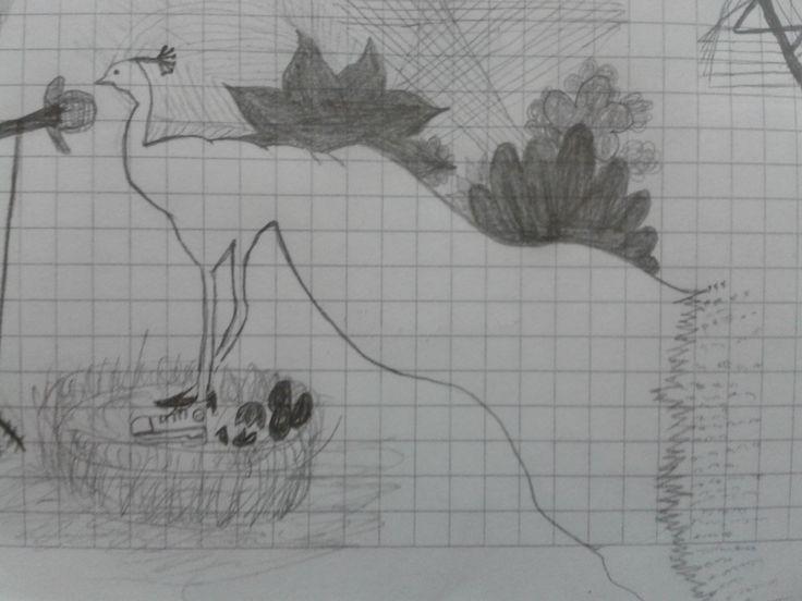 hep karganın sesinin kötü, bülbülün sesinin güzel olduğundan bahsettik. ya tavus kuşları ?