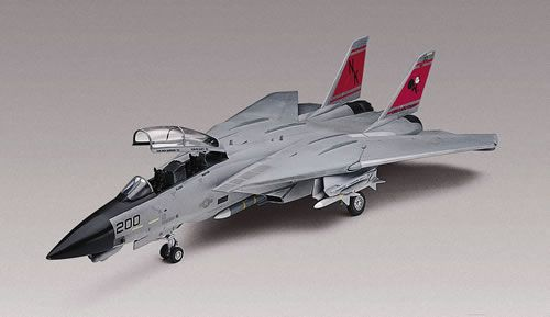 1/48 Scale F-14D Super Tomcat