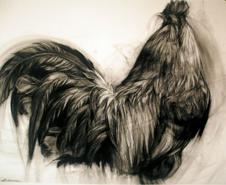 Charcoal rooster by April Coppini