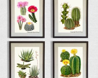 This is a high-quality large botanic print taken from the original watercolor painting created by my mother Krisztina Bíró.  - printed on high quality A4 (8 x 11 inches) paper - printed using Canon Pixma PRO-1 professional inkjet printer - using pigment inks that wont fade away in time - the print is signed and dated on the back - it will come sealed in a hard-backed envelope  - frame is not included