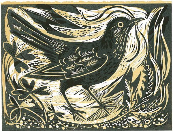 Mark Hearld's 'Ballindalloch Blackbird' linocut print, a co-edition with St Jude's http://www.stjudesprints.co.uk