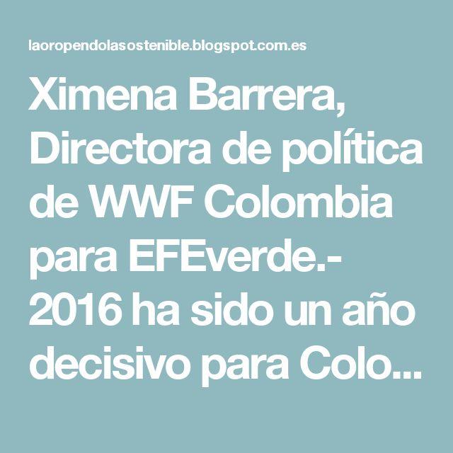 Ximena Barrera, Directora de política de WWF Colombia para EFEverde.- 2016 ha sido un año decisivo para Colombia y para el mundo entero. En menos de un año después de su adopción, el Acuerdo de París entró en vigor gracias a la enorme voluntad política de los países del mundo de hacerle frente al cambio climático. Actualmente, más de 100 países lo han ratificado y otros, como Colombia, se encuentran en proceso de hacerlo.