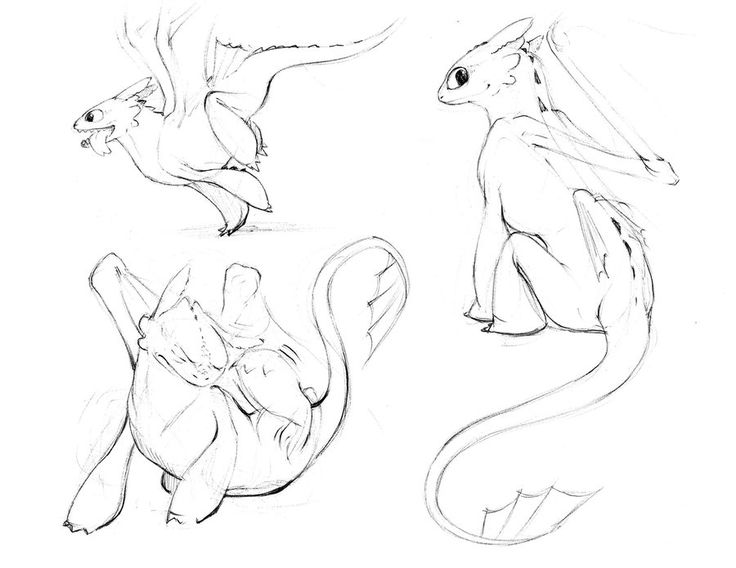 Nightfury Sketches