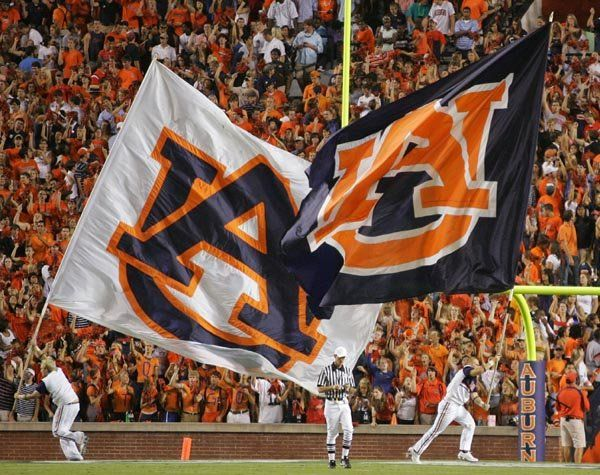 Auburn Tigers <3 War Eagle!  The 'other' AL team who we support except when versus AL....
