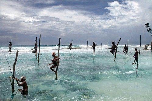 Photo Sri Lanka - Pascal Mannaerts
