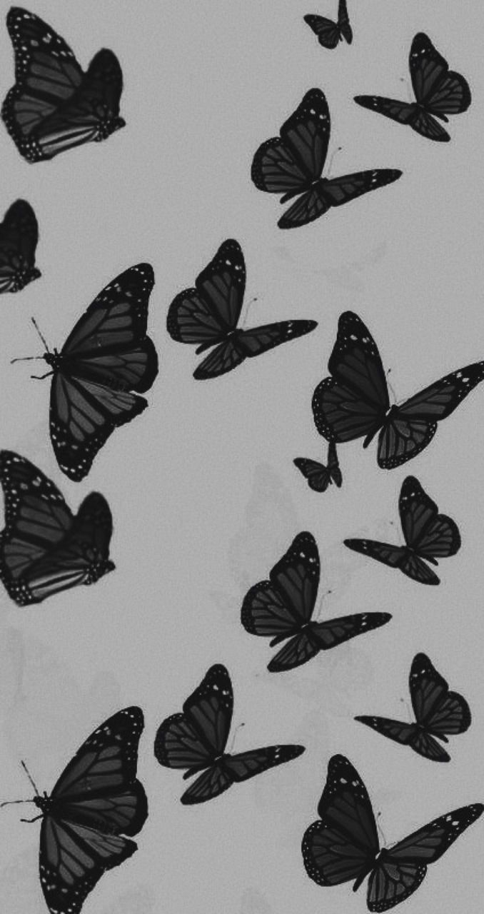 Black Aesthetic Butterflies White Wallpaper For Iphone Black Aesthetic Wallpaper Black And White Wallpaper Iphone