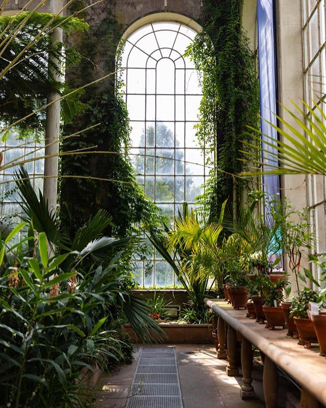 3303ea835b49d00aa2ebe0716ed445b8 - Places To Eat Near Botanic Gardens Edinburgh