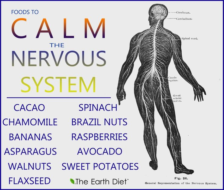 Foods That Help Your Nervous System - PositiveMedPositiveMed | Stay Healthy. Live Happy