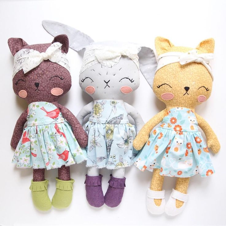 Bunny and cats
