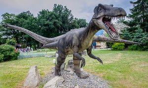 Oferta: Prehistoryczne oceanarium, Park dinozaurów i więcej: całodzienny bilet wstępu od 29,99 zł do Dream Parku Ochaby , w Ochaby Wielkie. Cena: 29,99zł
