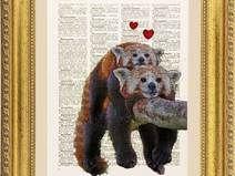Panda in amore illustrazione, pagina dizionario