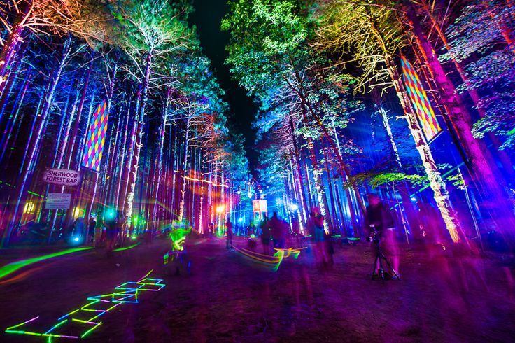 Electric Forest music festival in Rothbury, Michigan/WOULD LOVE TO GO FOR THIS…