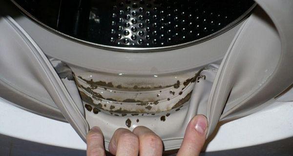 Si vous commencez soudainement à remarquer que vos vêtements obtiennent une odeur étrange après le lavage, et il y a des taches noires entre les anneaux en caoutchouc ou dans le compartiment de poudre de