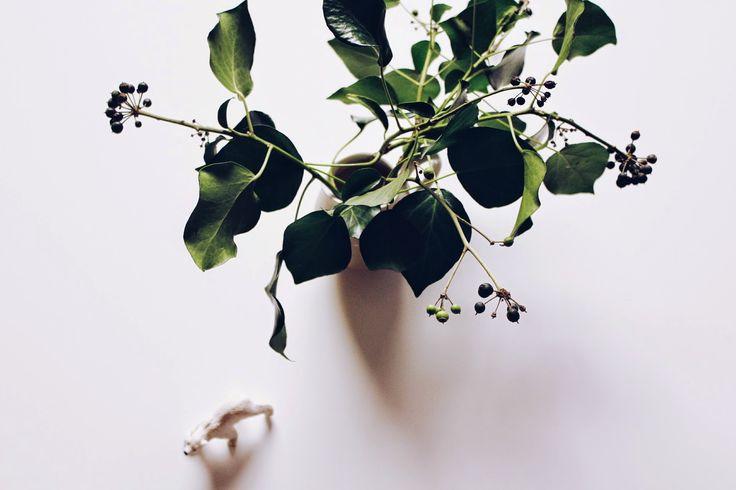 P E T R O N I A L O C U T A: Haz tu #Navidad sencilla #christmas #minimalism