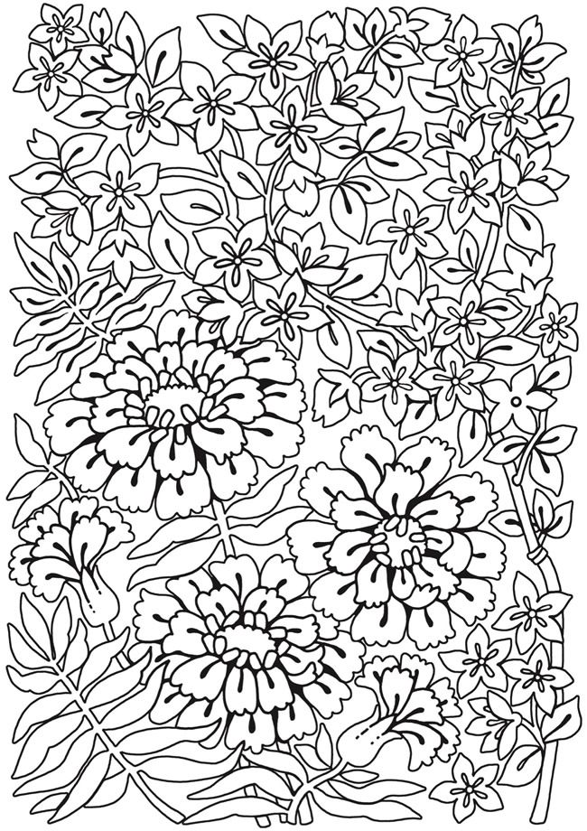 spark flower fun coloring book dover publications