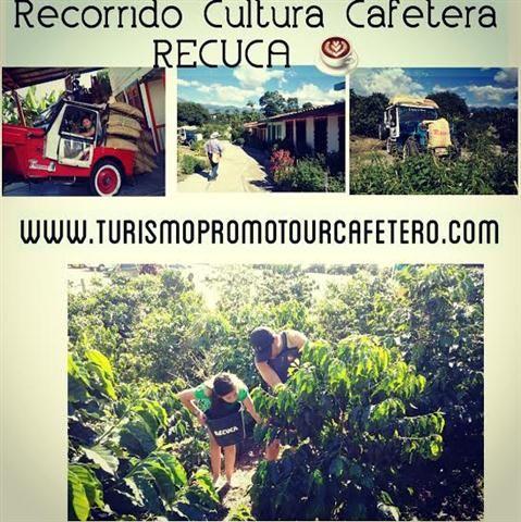 Reservas para Parejas-Grupos-Excursión-Encuentro Familiar-Religioso WhatsApp 3162218052 AQUI ➡  http://www.turismopromotourcafetero.com/recorrido-cultura-cafetera-73-2