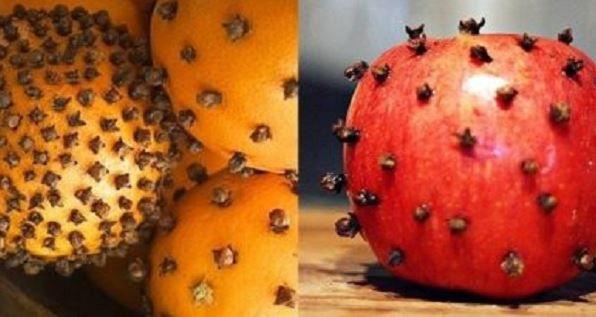 Tym prostym trikiem raz na zawsze pozbędziesz się owadów z domu i ogródka - Noizz