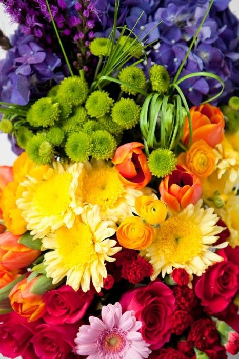 106 best images about multi colored things on pinterest for How to make multi colored flowers