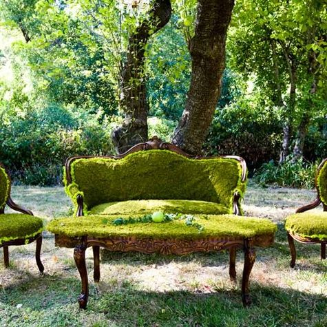Moss covered vintage furniture vignettes