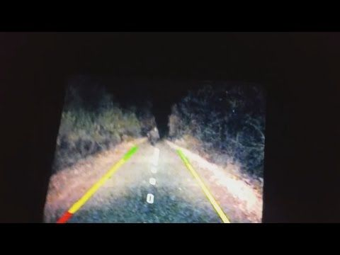 A compelling video if an alleged Bigfoot Chasing a car in Colorado Send In Breakdown - YouTube